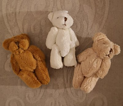 tiny-teddies-1a